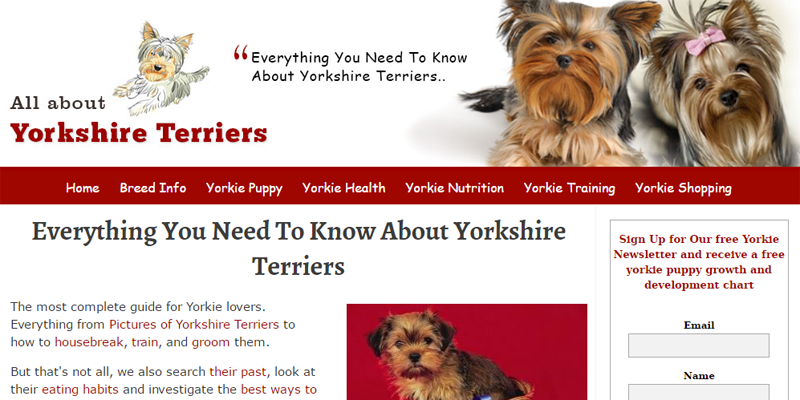 all-about-yorkshire-terriers-print-img